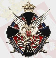 Kokarda dinarske divizije